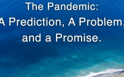The Pandemic: A Prediction, A Problem, and a Promise