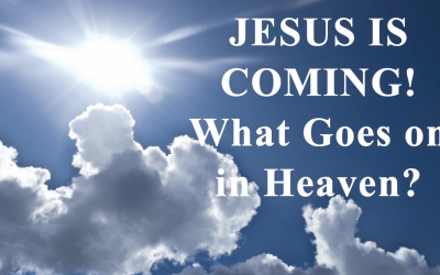 What Goes on in Heaven?